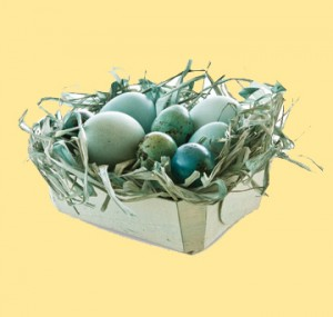 easter-eggs-decor-nest16