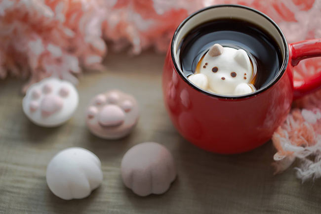 marshmallow-cat-japan-4